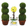 MC14750 - Lemon Tree Topiary Set