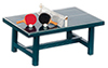 AZG8050 - Ping Pong Table/Rackets