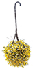 CAHBL19 - Hanging Basket: Yellow-White, Large
