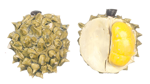 AZG7141 - 2 Durian Fruits