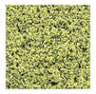 MBLFS3PG - Fine Foliage/Turf Pale Green