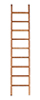 10In Ladder W Tread