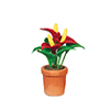 AZB0134 - Anthurium In Pot, Red