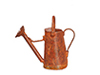 AZEIWF581 - Small Watering Can/Rust