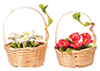 AZG7861 - Hand Made Flower Basket/2