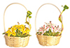 AZG7863 - Hand Made Flower Basket/2