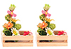 AZG7864 - Hand Made Flower Boxes/2