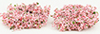 CA0125 - Wild Bushes - Spring Pink Mix, 20 pieces