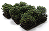 "CA0315 - 1"" Low Green Bushes - Set of 3"