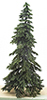 CA0538 - Appalachian Green Spruce on Spike, 8 Inches