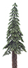 CA0544 - Ponderosa Pine on Spike, 8 Inches