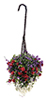 CAHBS18 - Hanging Basket: Red-Purple-White, Small