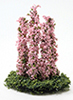 CALSP09 - Larkspur Flower, Pink, 5Pc