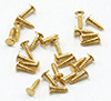 CLA05558 - Mini Nails, 1/8 Inch,Brass, 100/Pk