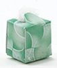 IM65134 - Box of Tissues, Green