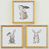 KCMKF27 - Bunny Picture Set, 3 Piece