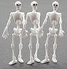 MUL5359 - 2In Skeletons 3Pcs***Temp. Discontinued-