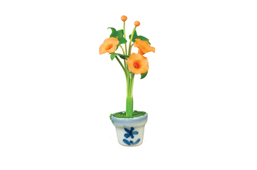 AZG7452 - Morning Glories in Pot, Assorted