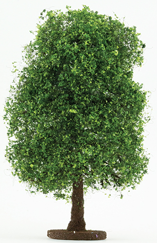 CABHL06 - Bush: Variegated Green, Large 6 1/2 Inch Tall