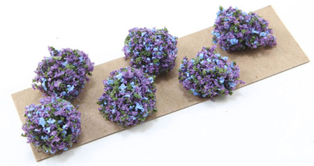 CABPL17 - Border Plant: Purple-Blue, Large, 6 Pieces
