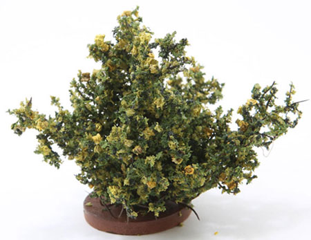 CARBLY - Rose Bush, Large, Yellow