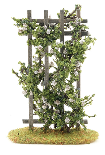 CARTW - Rose Trellis, White