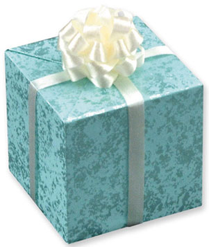 Large Teal Wedding Gift w/Bow