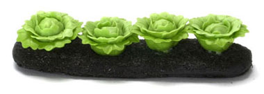 FCA1699 - Discontinued: Green Cabbages Garden