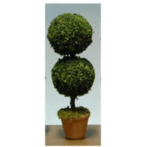 MBTOP12A - Topiary Large Round