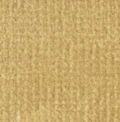 MG2345W - Carpet: Buff, 18 X 26
